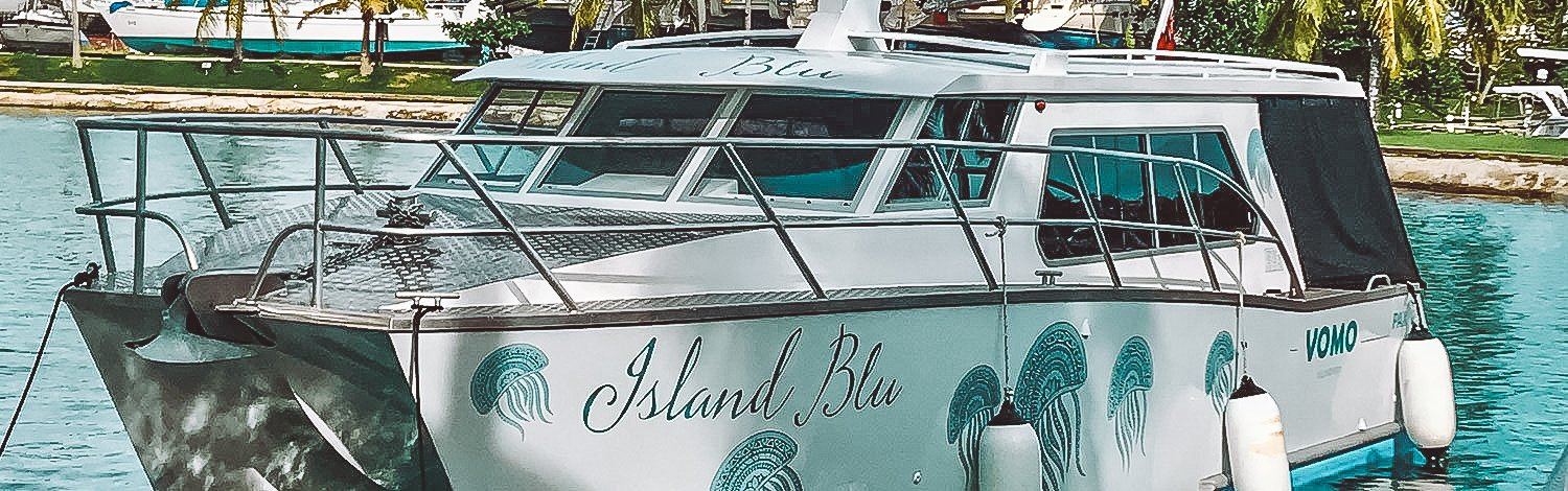 Island Blu Island Transfers By Speed Boat